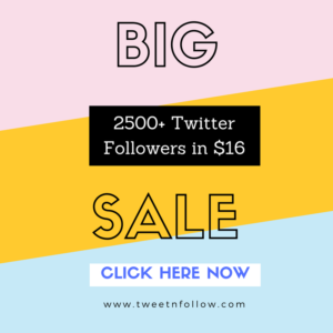Buy 100 Twitter Followers HQ & Cheap $2 49 - Tweetnfollow