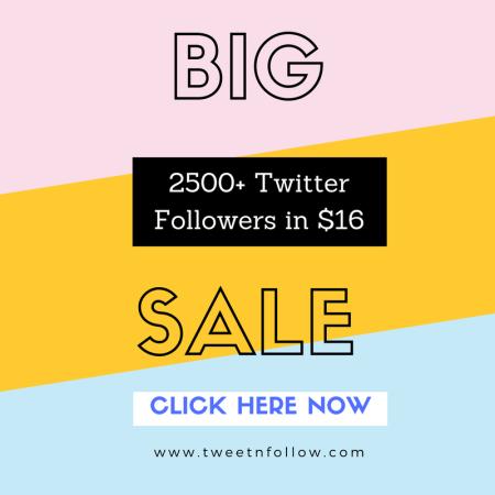 Buy 2500 Twitter Followers Cheap