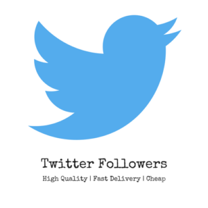 Buying Twitter Followers