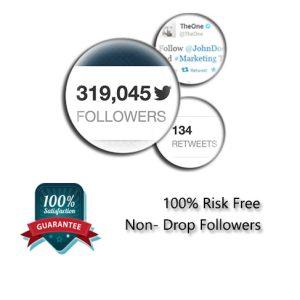 Buy twitter followers $1
