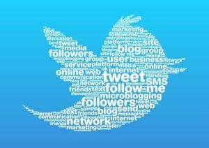 cheap-twitter-followers-tweetnfollow