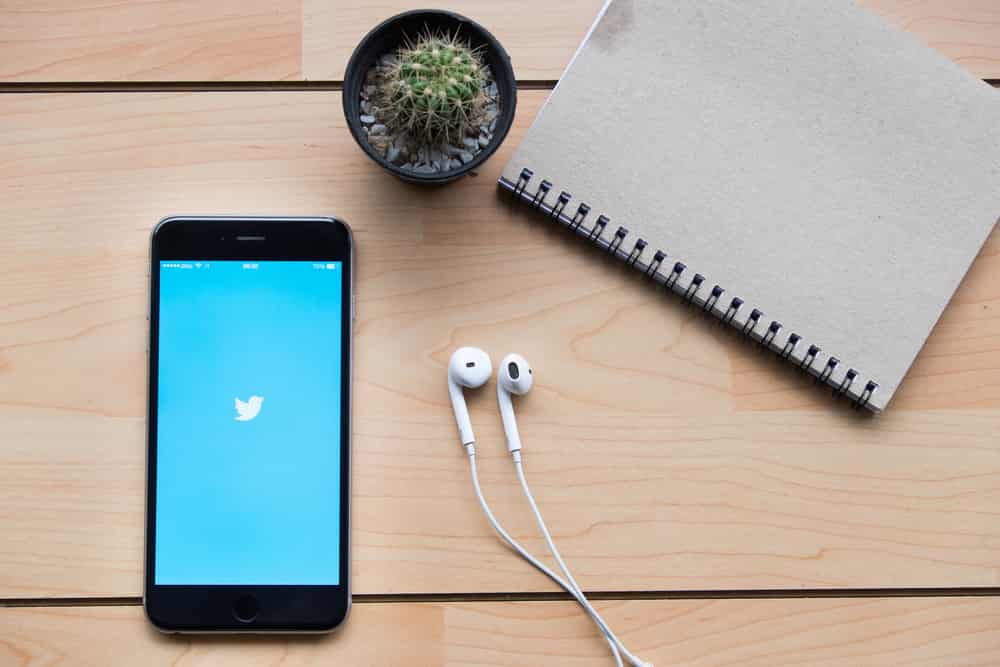 Buy Twitter Followers Review